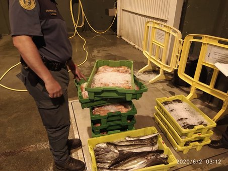 Interveñen 165 kg de peixe a un transportista por carecer de documentación legal para o seu transporte